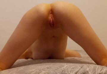 [f]ace down, ass up, legs spread. would you fuck me like this? 👉👈