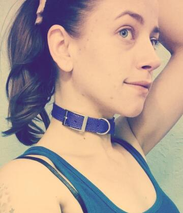 already got my collar. who wants to put me on a leash?